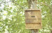 La casa del murciélago: una verde, repelente de insectos eficaz de energía