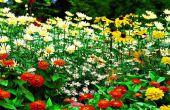 Sistema automatizado de Garduino de jardinería