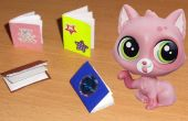 Libros Mini DIY
