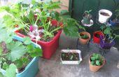 Tetra hidro caja jardín