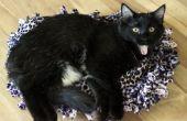 Cómo hacer un (no-coser) cama del animal doméstico
