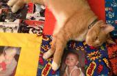 Crear una memoria tierno edredón (cat no incluido)