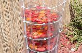 Rejilla de secado de tomate fácil. ¿