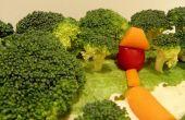 Bandeja de verduras de bosque!