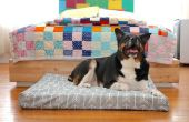 Cama del perro personalizado
