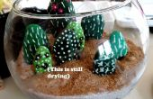 Terrario de cactus de la roca