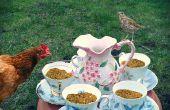 Taza de té pollo alimentador