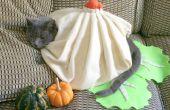 Traje de gato DIY: Sopa bola de masa hervida!