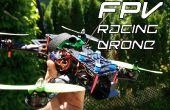 FPV DIY Racing abejón