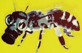 Traer una abeja a día de trabajo.