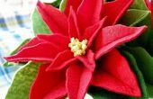 Chillones y suerte con flores hecho a mano flor de Pascua