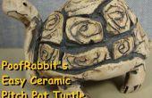 Fácil cerámica pellizcar Pot las tortugas