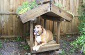 Verde con techo de terraza de perro