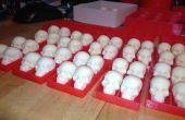 Calaveras de Chocolate blanco en bandejas PLA