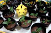 Mousse de Choco de albahaca en tazas de Chocolate: P
