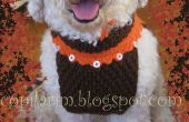 Dodo's autumn coat, hats and amigurumi toy