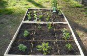Cómo hacer un pie cuadrado fácil jardín!