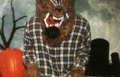 Disfraces de Halloween 2011 de mi hijo