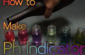 Cómo hacer pH indicador