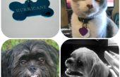 Actualización de etiqueta del animal doméstico - fácil, rápido y barato!