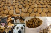 Galletas de mutt / aka perro galletas