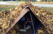 Construir una casa de hojas