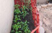 Cómo actualizar anualmente su jardín de flores, verduras o vides