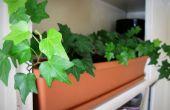 Sistema de riego automático de plantas