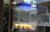 Deshidratador solar, libre y verde