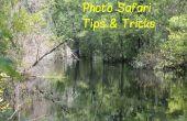 Foto Safari trucos y consejos de