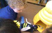Interactivo juego de abeja