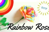Rosa arco iris DIY