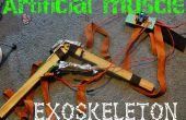 Construir un exoesqueleto para la Feria de Ciencias Google