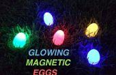 Brillantes huevos magnética