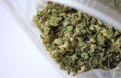 Cómo decarboxilar cannabis
