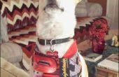 Costura para los hombres: Perro proyecto Bandana para principiantes