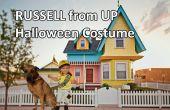 Russell de UP traje de Halloween para los niños