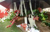 "Navidad tropical Cat ""Árbol"""