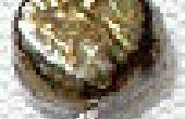 ¿Pendientes y alfileres de cabeza de caracol en espiral