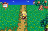 Caminos de tierra en - Animal Crossing City Folk (Wii)