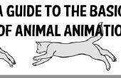 Una guía de los fundamentos de la animación Animal