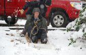 Trineo de nieve caseros