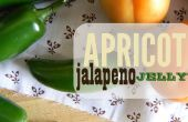 Mermelada de albaricoque jalapeños + freebie clave
