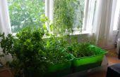 Interior de hierba de jardín con riego automático