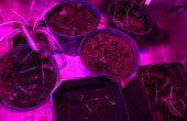 24 vatios LED crece la luz con Control de brillo