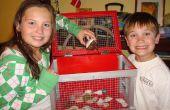 Cómo construir un cangrejo ermitaño (u otros animalitos pequeños) jaula