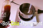 ¿Qué pasará si usted hervir Coca Cola?