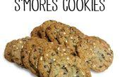 Las mejores galletas s ' Mores