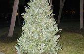 Maknig un didjeridoo de un árbol de Navidad. Bore out method