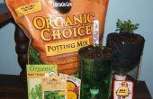 De riego uno mismo reciclado maceta para el cultivo de hierbas y flores